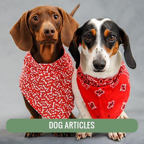 Dog Articles
